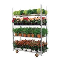 Używany wózek duński - wózek na rośliny 1350x565x1900mm