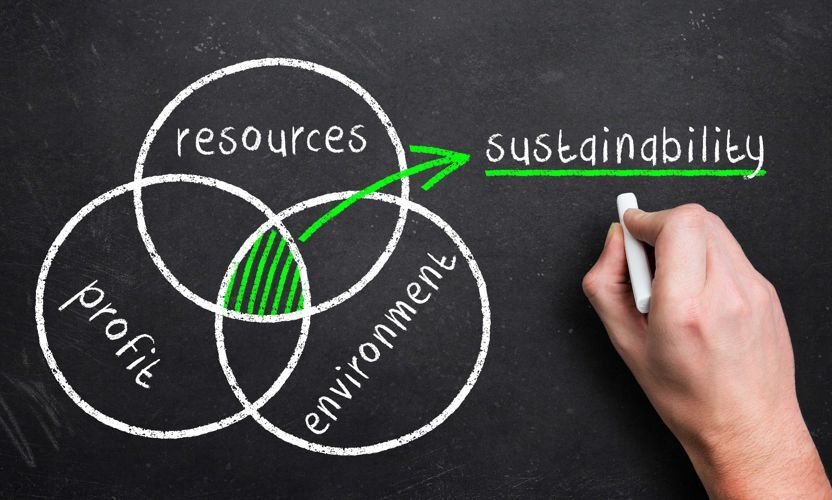 Poznaj 4 zasady zrównoważonej logistyki opakowań