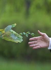5 kroków w celu zbudowania zrównoważonego łańcucha dostaw