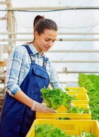 Zadbaj o plony - poznaj pojemniki, wózki i inne rozwiązania dla rolnictwa