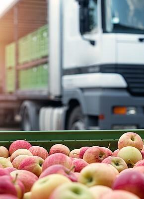 Zachowaj świeżość warzyw i owoców dzięki roli odpowiednich opakowań logistycznych